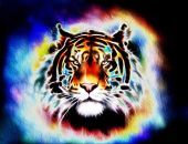 Painting of a bright mighty tiger head on a soft toned abstract background eye contact — Foto Stock