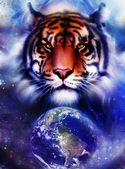 Painting  tiger on color cosmic space background, wildlife animals. With Earth and stars. — Stock Photo