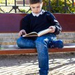 Boy does his homework in the park — Fotografia Stock  #65721033