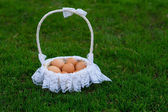 Chicken eggs in a basket — Stock Photo