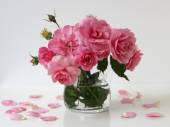 Bouquet of pink roses in a vase. Floral still life with roses and petals. — Foto Stock