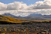 Wild nature of Russia. Kamchatka — Stock Photo