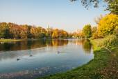 Autumn in Moscow parks — Stock Photo