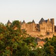 View of old fortified Carcassonne town — Stock Photo #62967463