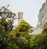 Old Devin castle — Стоковое фото