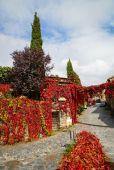 Autumn at Patones de Arriba — Stock Photo