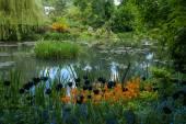 Spring gardens of Giverny — Foto de Stock