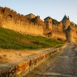 View of old fortified Carcassonne town — Stock Photo #62986559