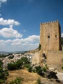 Castillo de la Yedra — Foto de Stock