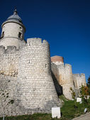 Castle at Simancas — Photo