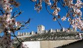 Castle Tellez Giron — Стоковое фото