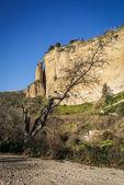 Ronda city on cliffs — Stok fotoğraf