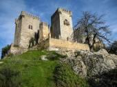 Middeleeuws kasteel in Almodovar del Rio — Stockfoto