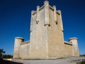 Castle at Torrelobaton — Stockfoto