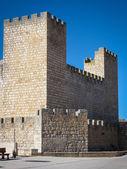 在 Ensinas de Escuevo 的中世纪古堡 — 图库照片