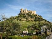 Medieval castle at Almodovar del Rio — 图库照片