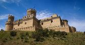 Old mansanares Castle on hill — Foto de Stock