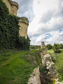 Ruins of a castle in Sesena — 图库照片