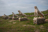 Lion statues at the archaeological island of Delos — Stock Photo