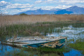 Fishing boat in the reeds — Stock Photo