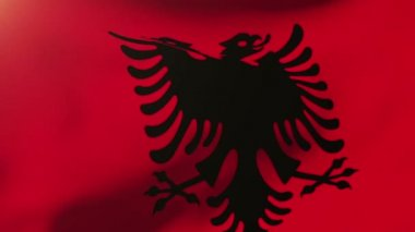 Albania flag waving in the wind. Looping sun rises style.  Animation loop — Stock Video