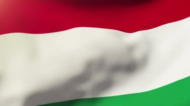 Hungary flag waving in the wind. Looping sun rises style.  Animation loop — Stok video