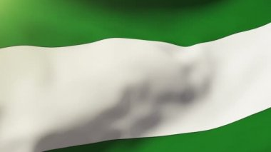 Andalucia flag waving in the wind. Looping sun rises style.  Animation loop — Vídeo de Stock