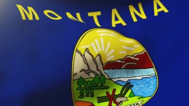 Montana flag waving in the wind. Looping sun rises style.  Animation loop — Stock Video