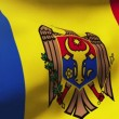 Moldova flag waving in the wind. Looping sun rises style.  Animation loop — Stock Video #78226476