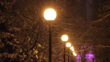 Parque de noite — Vídeo stock