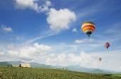 Colorful hot-air balloons — Stock Photo