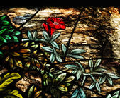 Colorful glass in church — Stock Photo