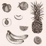 Sketch bananas, pineapple, peach, orange. — Stock Vector #69920431