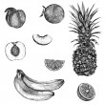 Sketch bananas, pineapple, peach, orange. — Stock Vector #69921075