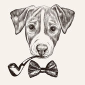 Sketch Jack Russell Terrier Dog — Vector de stock