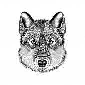 Zentangle stylized Wolf face. Hand Drawn Guata doodle vector ill — Stock Vector