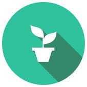 Flat Icon of houseplant — Vettoriale Stock