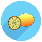 Whole lemon with slice — Stock Vector