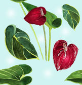 Watercolour anthuriums background — Stock Photo