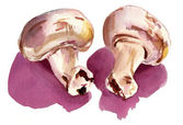 Watercolour champignons — Stock Photo