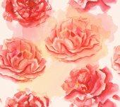 Watercolor tea roses — Stock Photo
