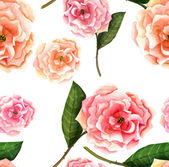 Watercolour roses background — Stock Photo