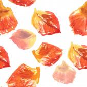 Watercolor rose petals — Стоковое фото