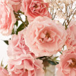 Tender pink tea roses background — Stock Photo #71819095