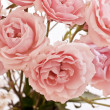 Tender pink tea roses background — Stock Photo #72880027