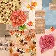Vintage styled collage with roses, butterflies, retro nespaper clippings, on old paper, background design or postcard template — Stock fotografie #72881705