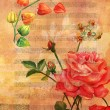 A watercolour drawing of a branch of physalis and a Victorian rose on a golden texture with muted sheet music in the background, a vintage postcard — Stock Photo #77490320