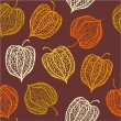 Seamless pattern of physalis — Stock Vector #62721247