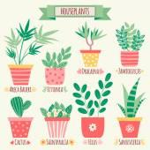 Set of houseplants in pots. — Stock Vector