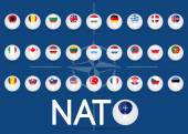 North Atlantic Treaty Organization flag — Stock Vector
